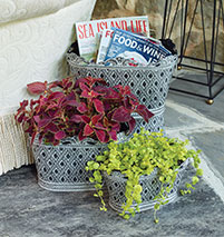 Set of container baskets